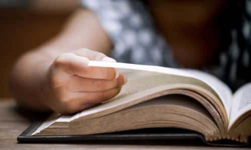 bibles4egypt